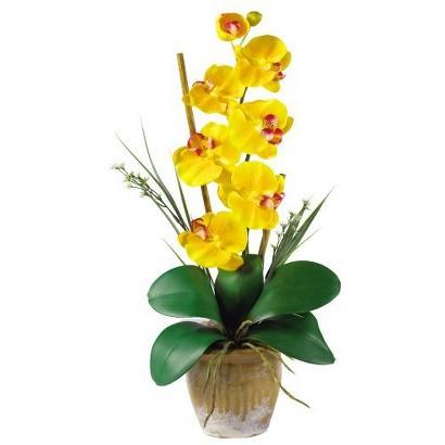 Faux plant - Single Stem Phalaenopsis