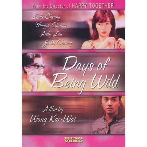 Days of Being Wild (Widescreen)
