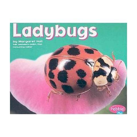 Ladybugs (Paperback)