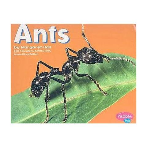 Ants (Paperback)