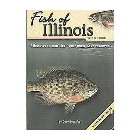 Fish of Illinois Field Guide (Paperback)