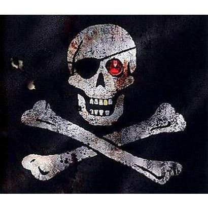 Pirates (Hardcover)