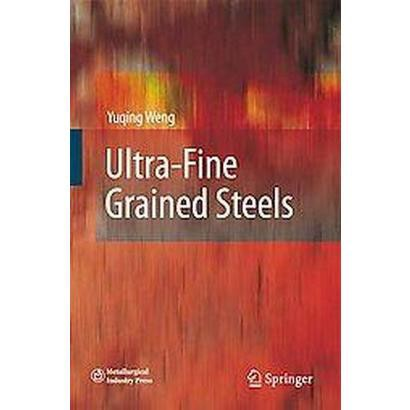 Ultra-Fine Grained Steels (Hardcover)