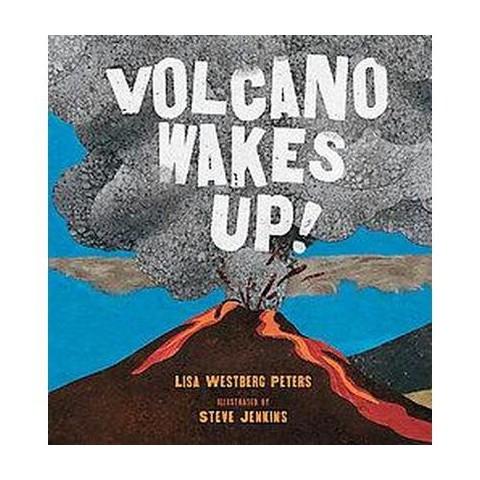 Volcano Wakes Up! (Hardcover)