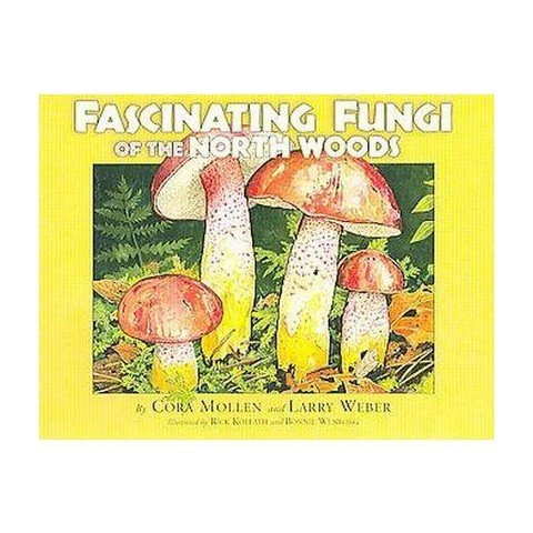 Fascinating Fungi of the North Woods (Paperback)