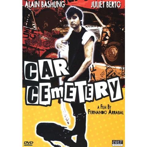 Car Cemetery (Widescreen)