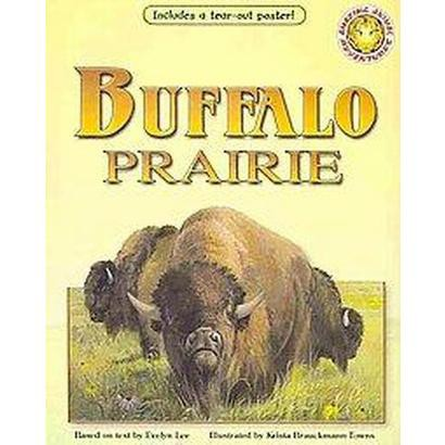 Buffalo Prairie (Mixed media product)