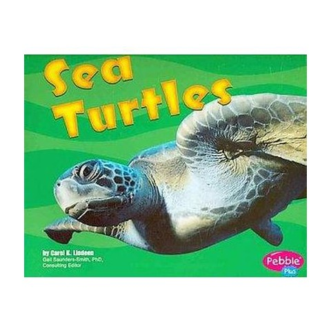 Sea Turtles ( Pebble Plus: Under the Sea) (Paperback)