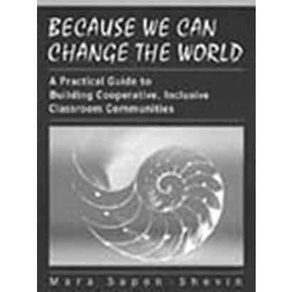 Because We Can Change the World (Paperback)