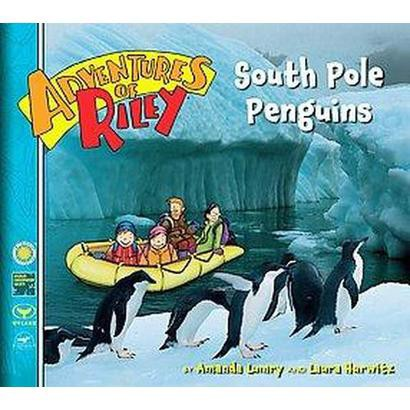 South Pole Penguins (Hardcover)