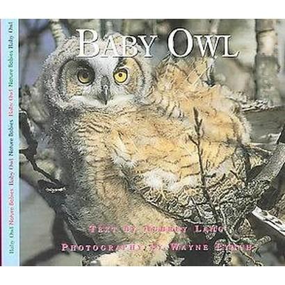Baby Owl (Hardcover)