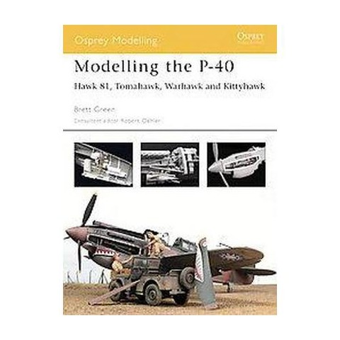 Modelling the P-40 (Paperback)