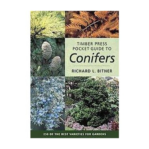 Timber Press Pocket Guide to Conifers (Paperback)