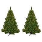4.5' Wintergreen Fir Lit Tree Collection