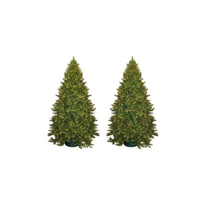 8.5 FT Wintergreen Fir Lit Tree Collection