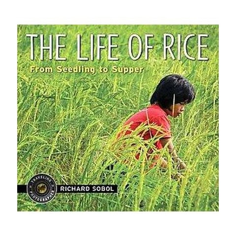 The Life of Rice (Hardcover)
