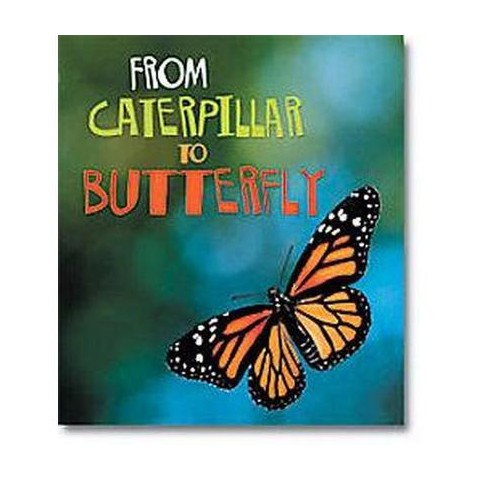 From Caterpillar to Butterfly (Paperback)