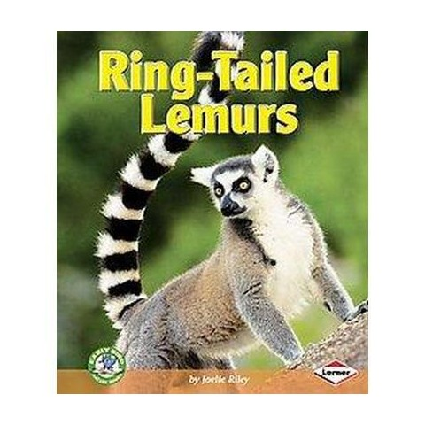 Ring-Tailed Lemurs (Hardcover)