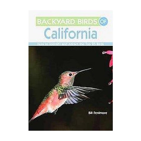 Backyard Birds of California (Illustrated) (Paperback)