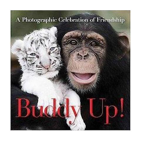 Buddy Up! (Hardcover)