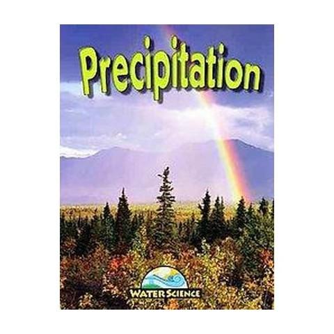 Precipitation (Mixed media product)