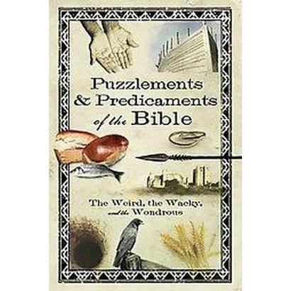 Puzzlements & Predicaments of the Bible (Paperback)