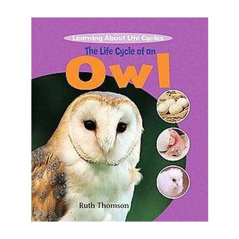The Life Cycle of an Owl (Hardcover)