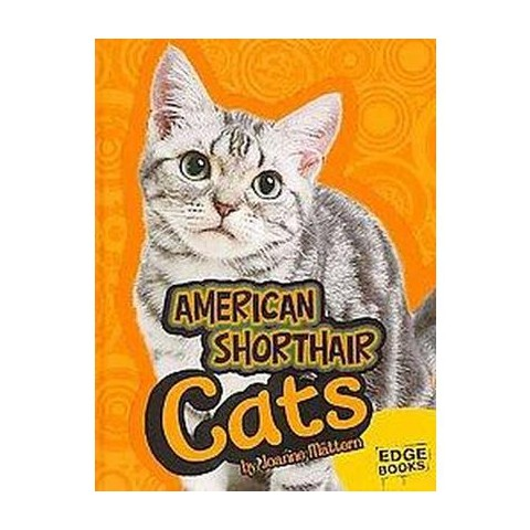 American Shorthair Cats (Hardcover)