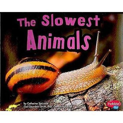 The Slowest Animals (Paperback)