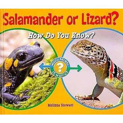 Salamander or Lizard? (Hardcover)
