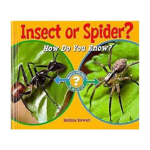 Insect or Spider? (Hardcover)