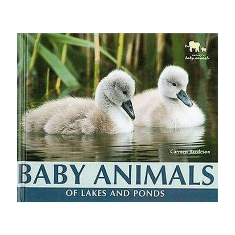 Baby Animals of Lakes and Ponds ( Nature's Baby Animals) (Hardcover)