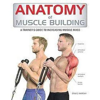 Anatomy of Muscle Building (Paperback)