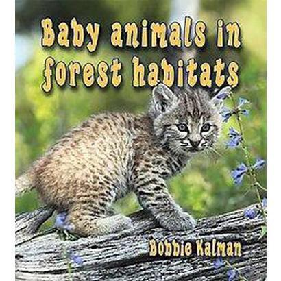 Baby Animals in Forest Habitats (Hardcover)