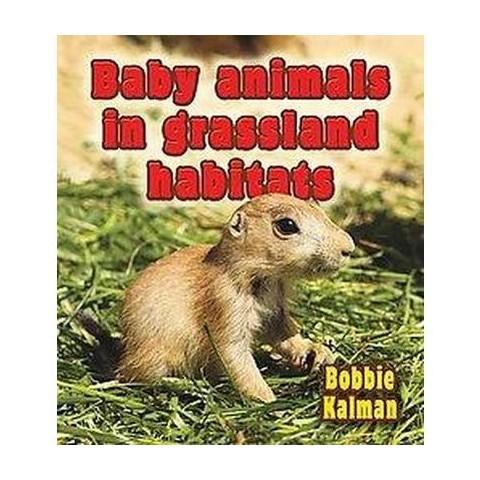 Baby Animals in Grassland Habitats (Hardcover)