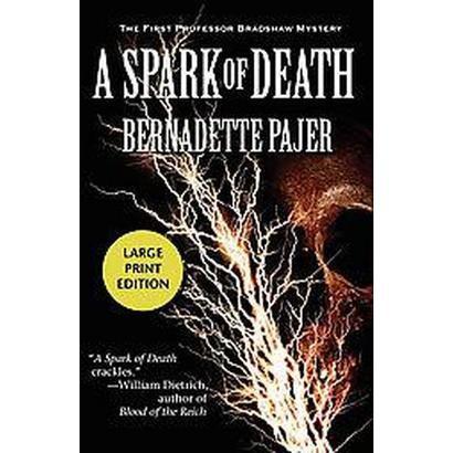 A Spark of Death (Large Print) (Paperback)