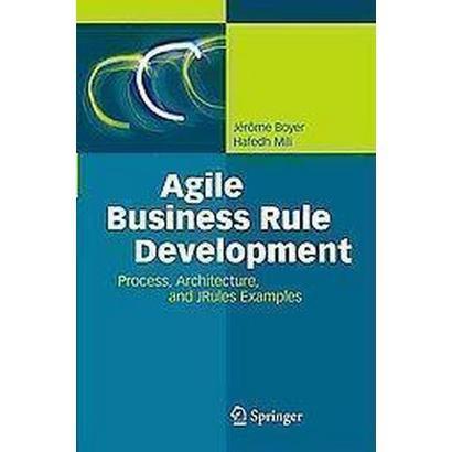 Agile Business Rule Development (Hardcover)