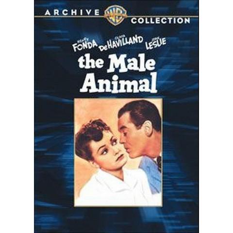 The Male Animal (Fullscreen)