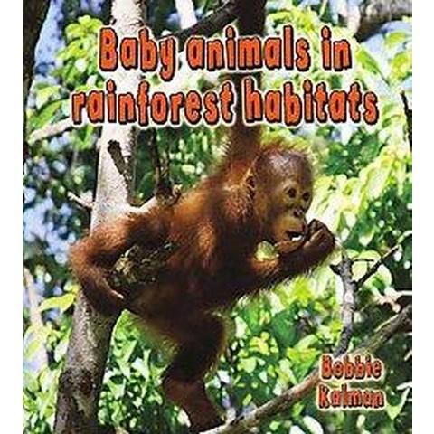Baby Animals in Rainforest Habitats (Hardcover)