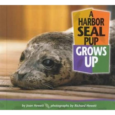A Harbor Seal Pup Grows Up (Hardcover)