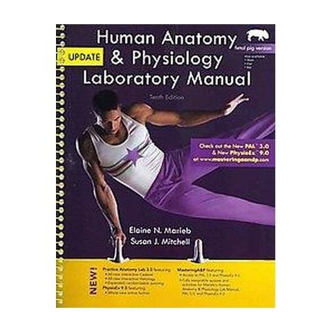 Lab 5 human anatomy physiology | Research paper Service ...