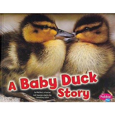 A Baby Duck Story (Hardcover)