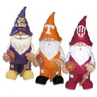 NCAA Team Gnome Collection