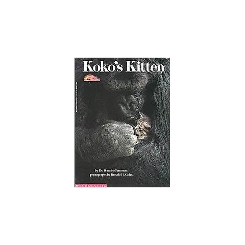 Koko's Kitten (Reissue) (Paperback)