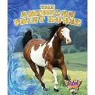 The American Paint Horse (Hardcover)