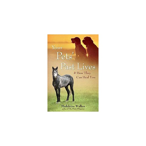 Your Pets' Past Lives (Paperback)