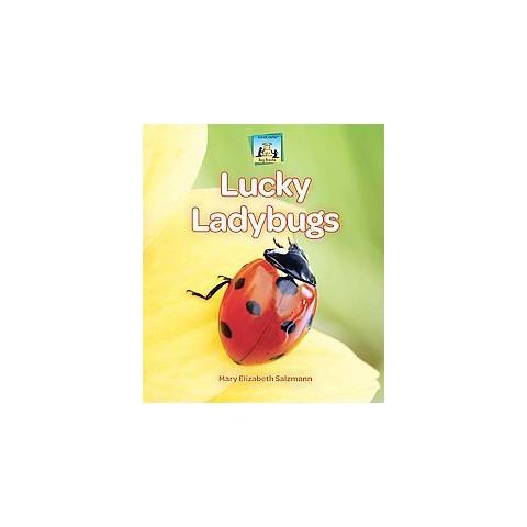 Lucky Ladybugs (Hardcover)
