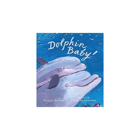 Dolphin Baby! (Hardcover)