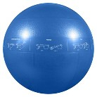 GoFit Pro Stability Ball - Blue (55cm)