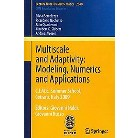 Multiscale and Adaptivity (Paperback)